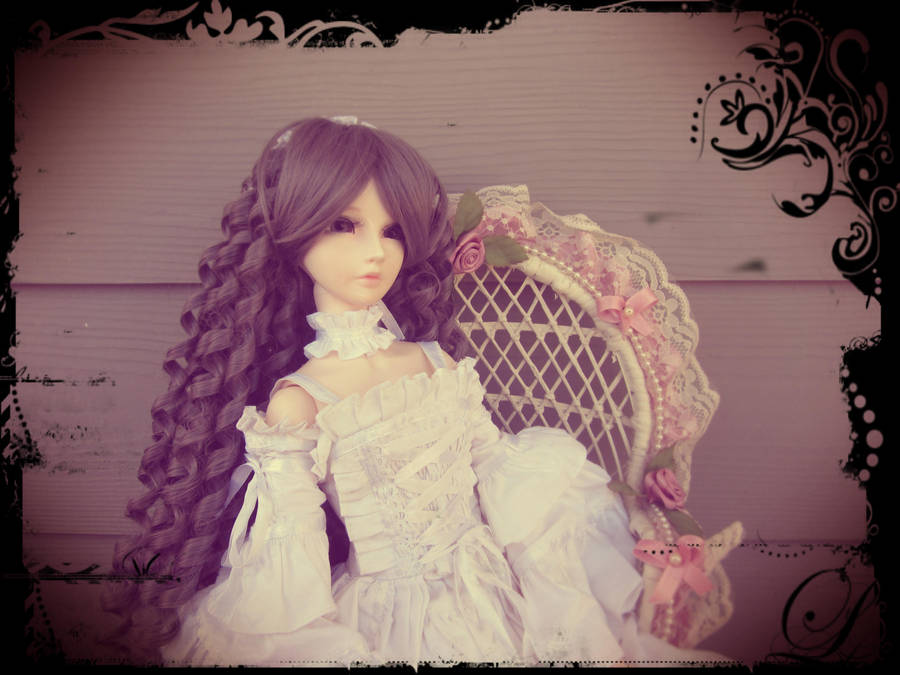 cillanoodle's Profile Picture