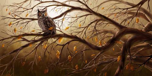 Great Horned Owl by Shorra