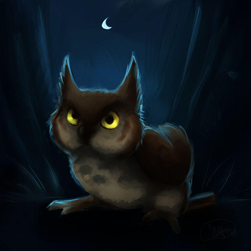 owl in the night by gabfury