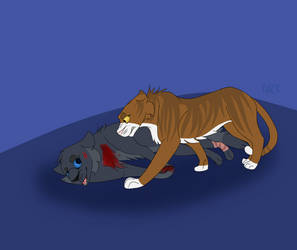 Cinderpelt's death by LilscrapNick