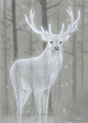 White Stag - sketch by MayumiOgihara