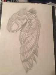 Owl by AmericanBloodyMary