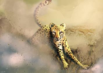 Cheetah by Silvixen