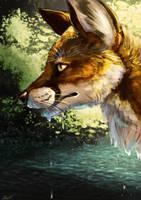 Fox by Silvixen
