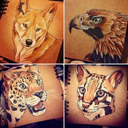 Animal Portraits 1 by Silvixen