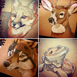 Animal Portraits 2 by Silvixen