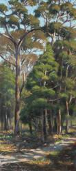 Bush Path Coochie by postapocalypsia