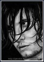 Ben Barnes by pbird12