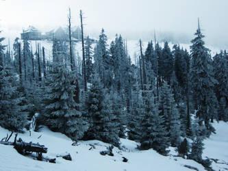 -+-Frozen Land-+- by TalviEnkeli