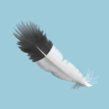 Feather 3D looking + shading by Zazou8888