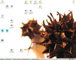 Desktop work by Zazou8888
