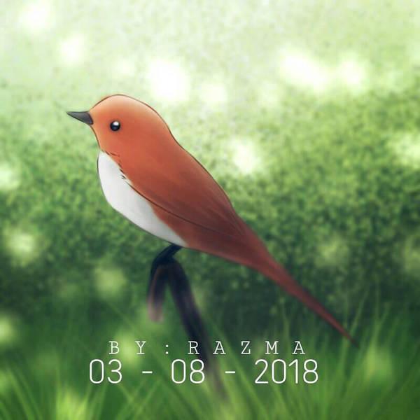 orange bird by 11razma