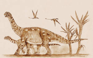 Camarasaurus by Kahless28