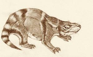 Repenomamus robustus by Kahless28