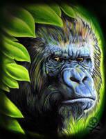 Gorilla Portrait by WillemXSM