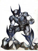 Wolverine by Sunndar316
