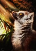 Lemur by ArtofNyra