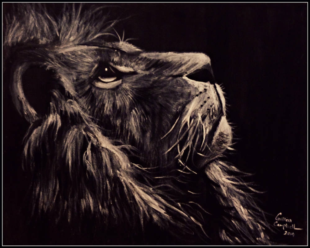 Black And White Lion Painting By Gilly15