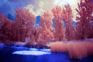 IR Lake - Red / Blue / White by TomZoy