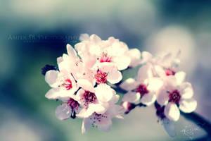 Pure Petals by KovoWolf