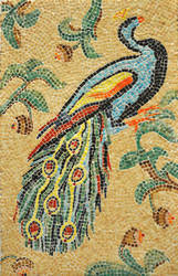 The peacock by DreamyNaria