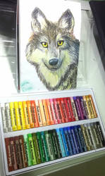 Wolf in oil pastel by NightWolfa