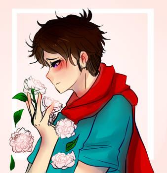 camellias by C-ALAXY