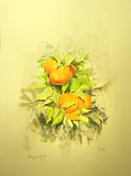 Cuadro Naranjos by EsglaiArt