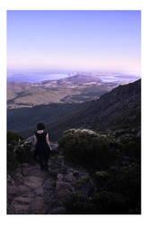 One Big Tassie Rock by dakotapearl