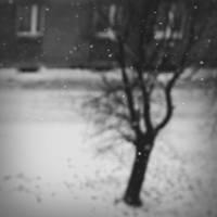 untitled weather by tju-tjuu