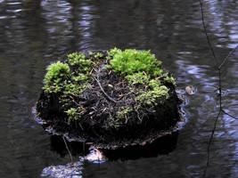 Little Island by Finnyanne