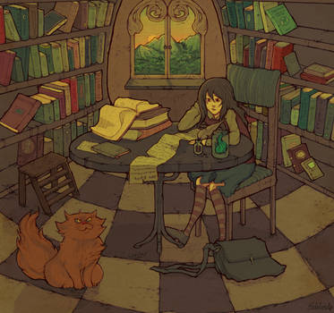 In the Library by relssaH