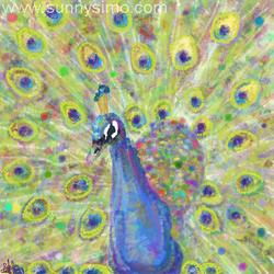 peacock by ikbenroze
