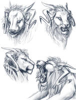 Ypsen lion form studies by RosiArts