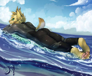 I can't properly surf by 1194-10