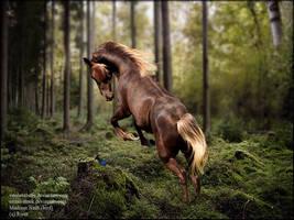 Woodland premade by BirdWingStudios