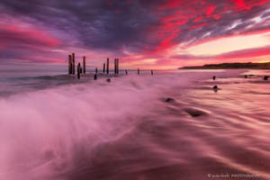 The Crimson Tide by Dee-T