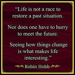 Robin Hobb Quote by Mulluane