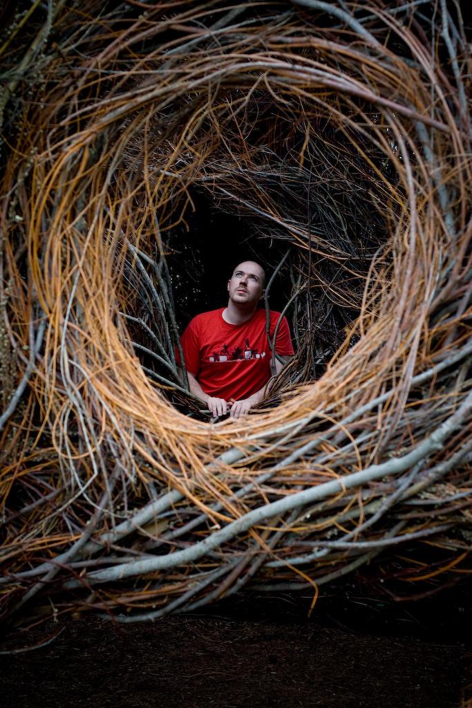 Bird's Nest Portal by pinguino