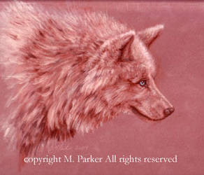 Rose Wolf by MPFitzpatrick