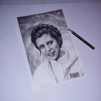 Princess Leia  by Ginchilla194