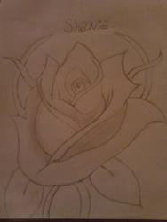 As Beautiful as a Rose by Aya406