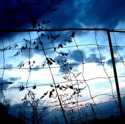 Blue sunset by Innwyn