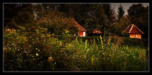 Life in the village by VesnaRa014