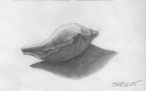 Pre Historic shell by ShellzArt