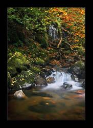 Fall into Autumn by lucias-tears