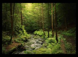 Loki's Forest by lucias-tears