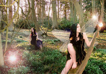 Faery Wood by lucias-tears