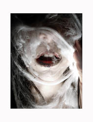 the awakening by lucias-tears