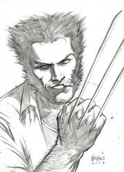 Wolverine Commission by FlowComa